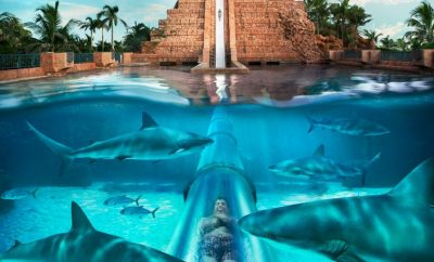 Activities in the Bahamas for Kids and the Young at Heart
